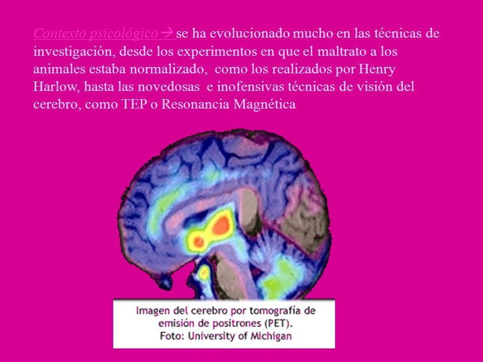 Contexto psicológico se ha evolucionado mucho en las técnicas de investigación, desde los experimentos en que el maltrato a los animales estaba normalizado, como los realizados por Henry Harlow, hasta las novedosas e inofensivas técnicas de visión del cerebro, como TEP o Resonancia Magnética