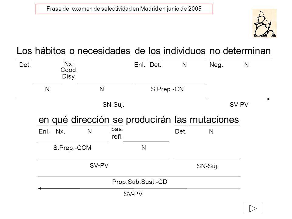 Frase del examen de selectividad en Madrid en junio de 2005
