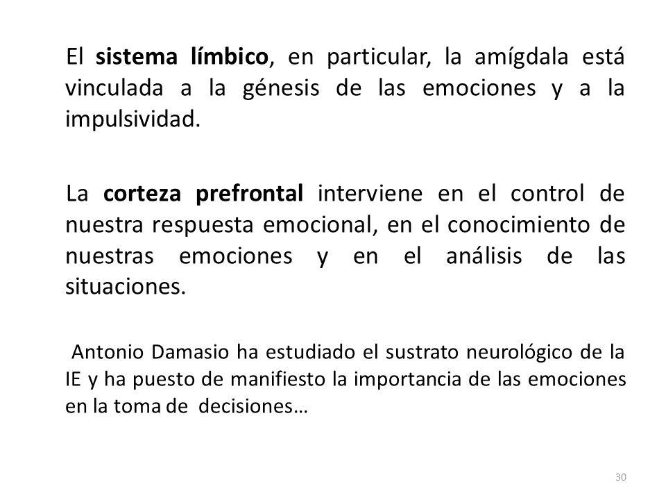 El sistema límbico, en particular, la amígdala está vinculada a la génesis de las emociones y a la impulsividad.