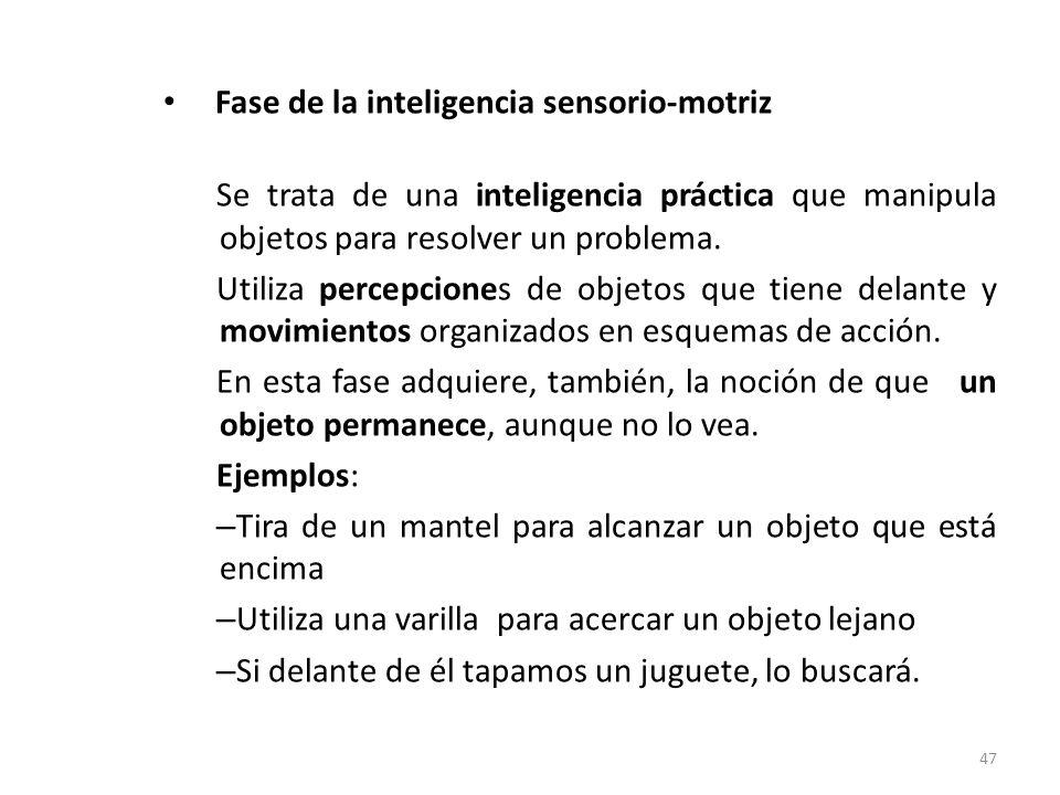Fase de la inteligencia sensorio-motriz (6 meses- 2 años)