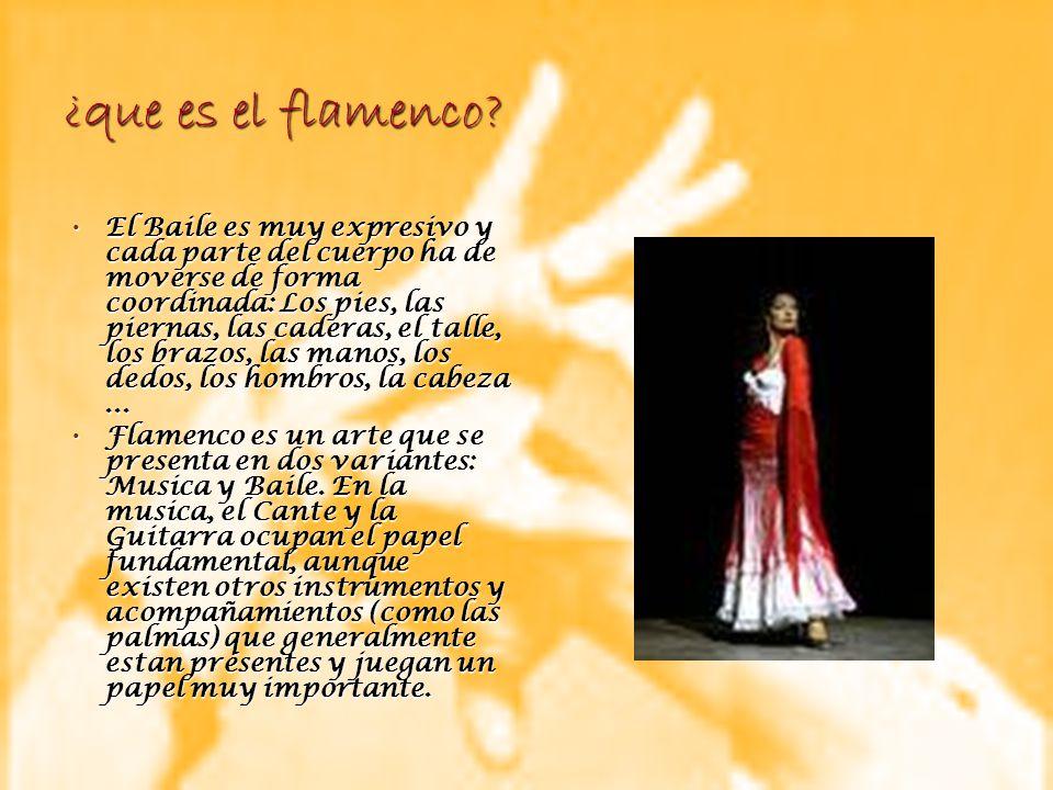 ¿que es el flamenco