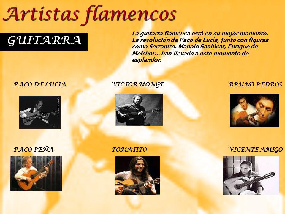 Artistas flamencos GUITARRA