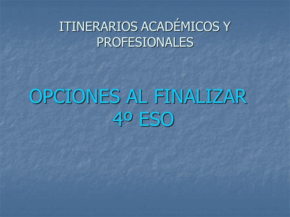 ITINERARIOS ACADÉMICOS Y PROFESIONALES