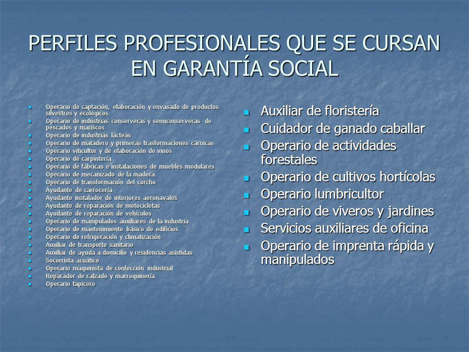 PERFILES PROFESIONALES QUE SE CURSAN EN GARANTÍA SOCIAL