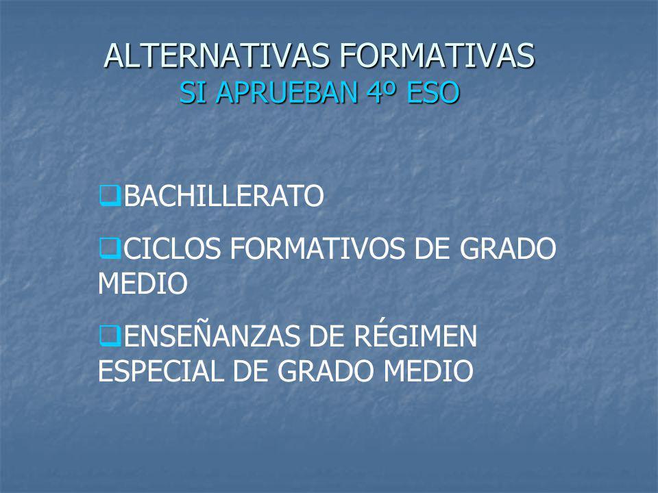 ALTERNATIVAS FORMATIVAS SI APRUEBAN 4º ESO