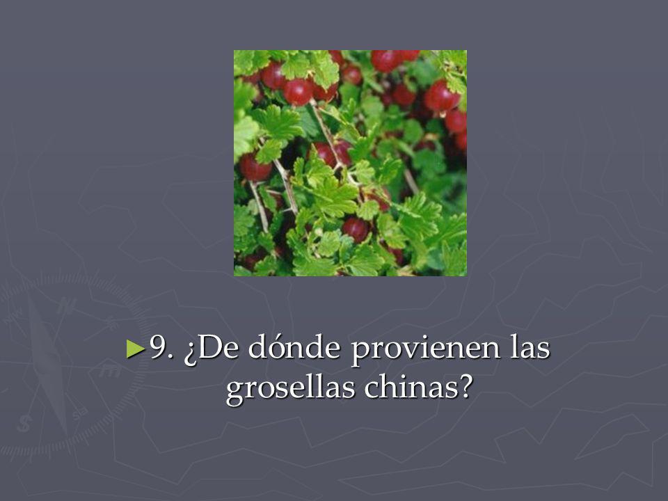 9. ¿De dónde provienen las grosellas chinas
