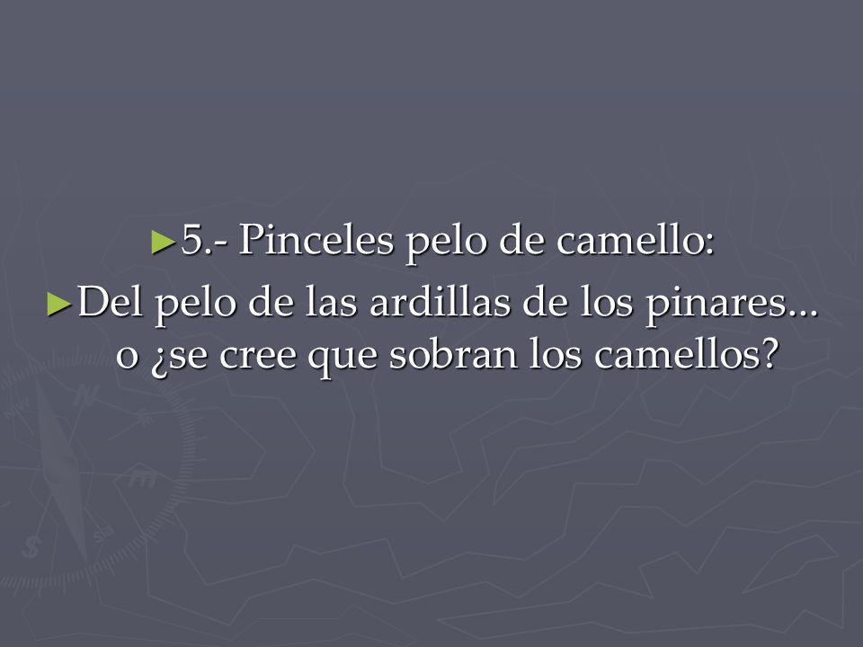 5.- Pinceles pelo de camello: