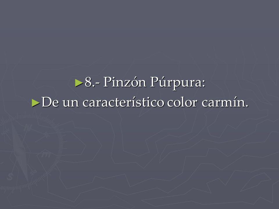 De un característico color carmín.
