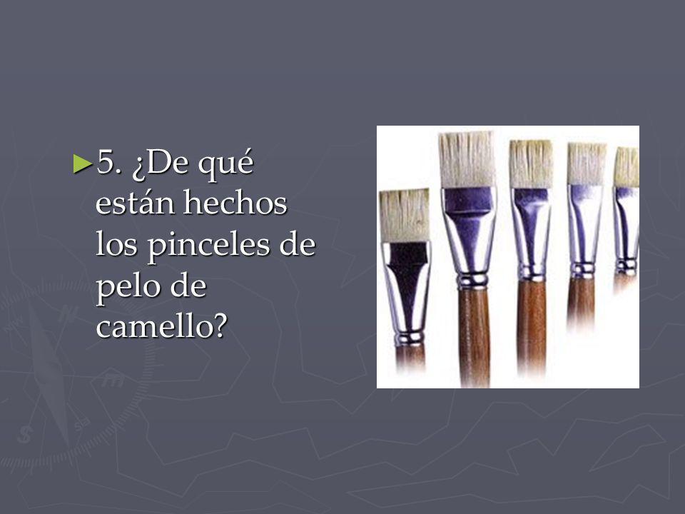 5. ¿De qué están hechos los pinceles de pelo de camello