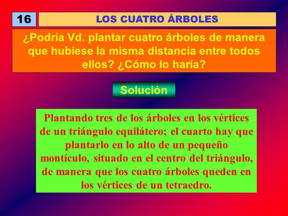 16 LOS CUATRO ÁRBOLES. ¿Podría Vd. plantar cuatro árboles de manera que hubiese la misma distancia entre todos ellos ¿Cómo lo haría