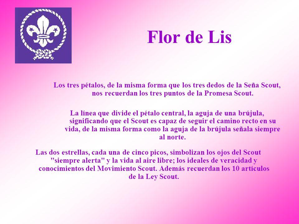 Flor de Lis Los tres pétalos, de la misma forma que los tres dedos de la Seña Scout, nos recuerdan los tres puntos de la Promesa Scout.