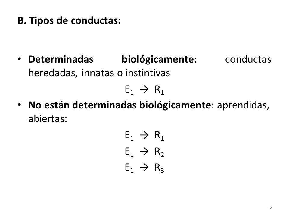 B. Tipos de conductas: Determinadas biológicamente: conductas heredadas, innatas o instintivas. E1 → R1.