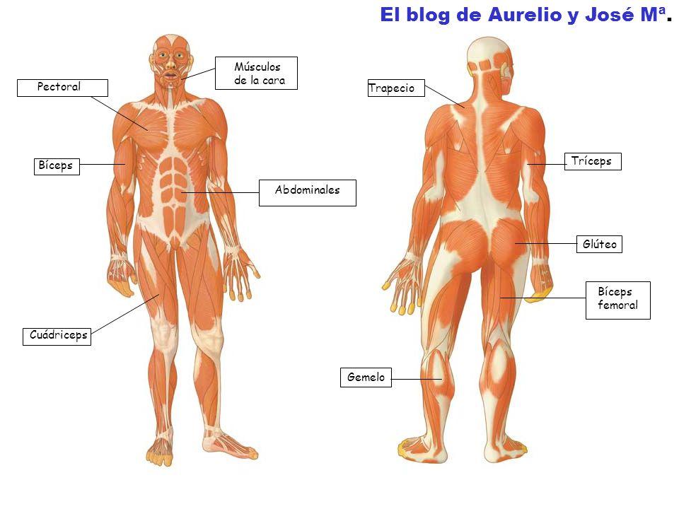 El blog de Aurelio y José Mª.