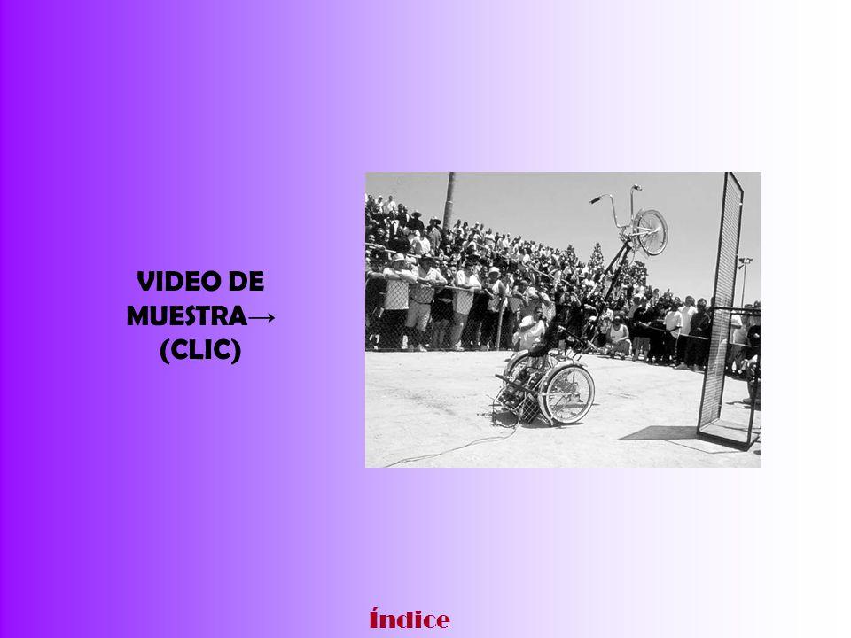 VIDEO DE MUESTRA→ (CLIC)