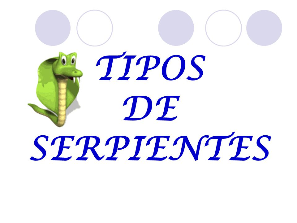 TIPOS DE SERPIENTES