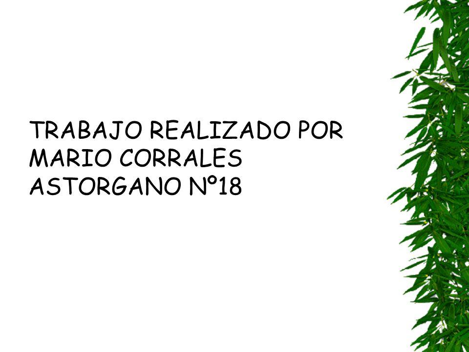 TRABAJO REALIZADO POR MARIO CORRALES ASTORGANO Nº18