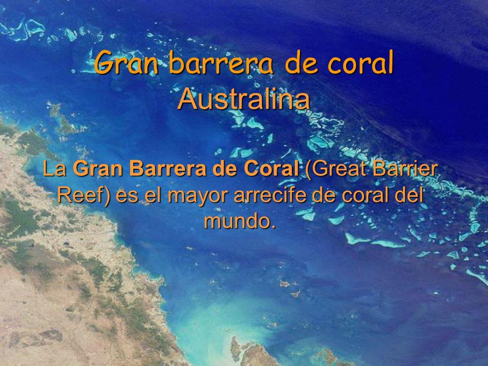Gran barrera de coral Australina