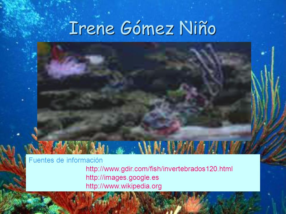Irene Gómez Niño Fuentes de información: