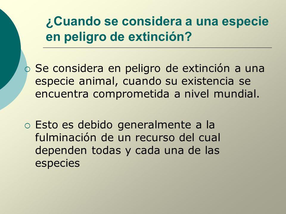 ¿Cuando se considera a una especie en peligro de extinción