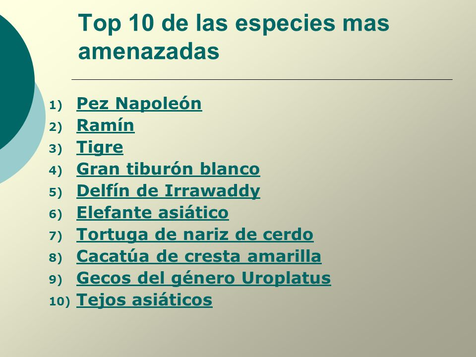 Top 10 de las especies mas amenazadas
