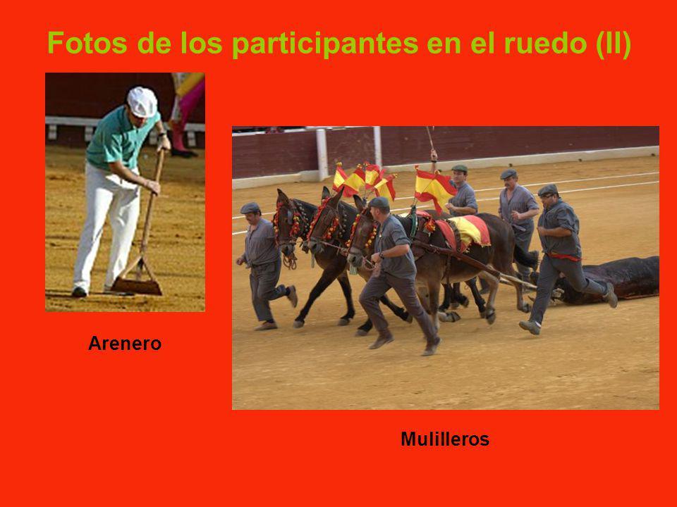Fotos de los participantes en el ruedo (II)