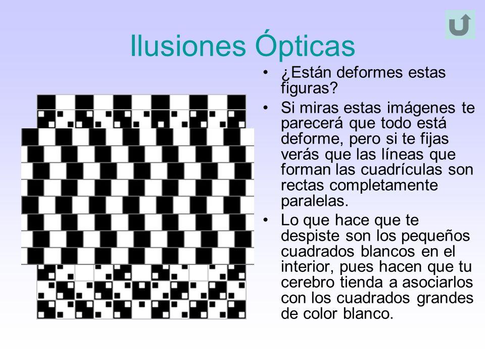 Ilusiones Ópticas ¿Están deformes estas figuras