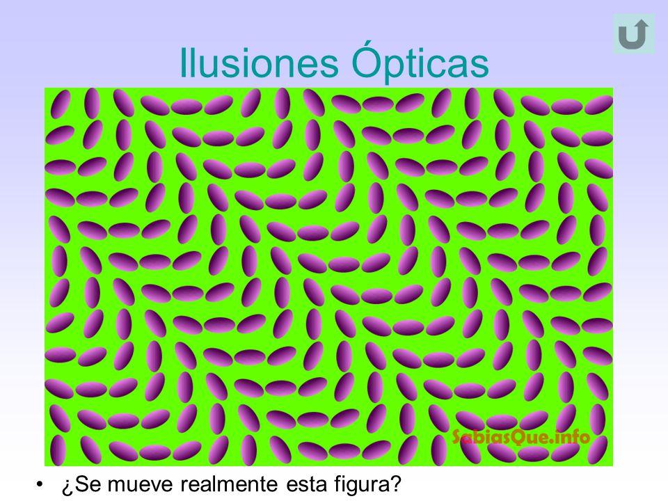 Ilusiones Ópticas ¿Se mueve realmente esta figura