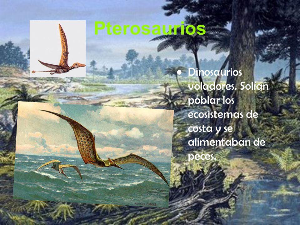 Pterosaurios Dinosaurios voladores.