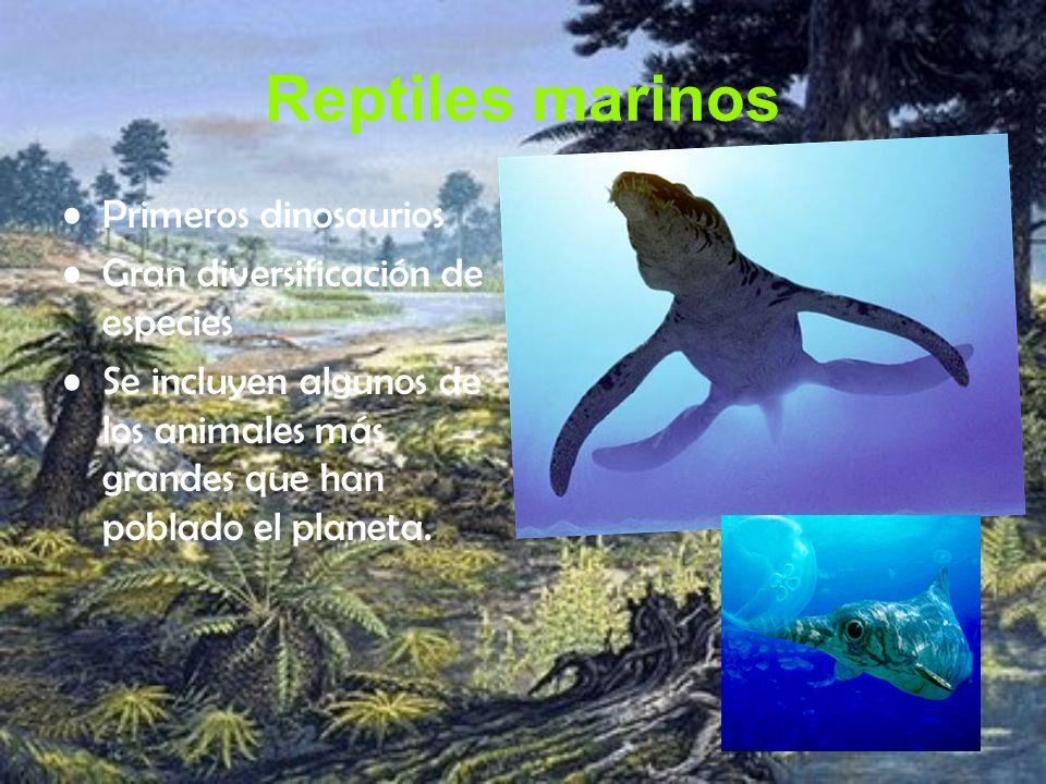 Reptiles marinos Primeros dinosaurios Gran diversificación de especies