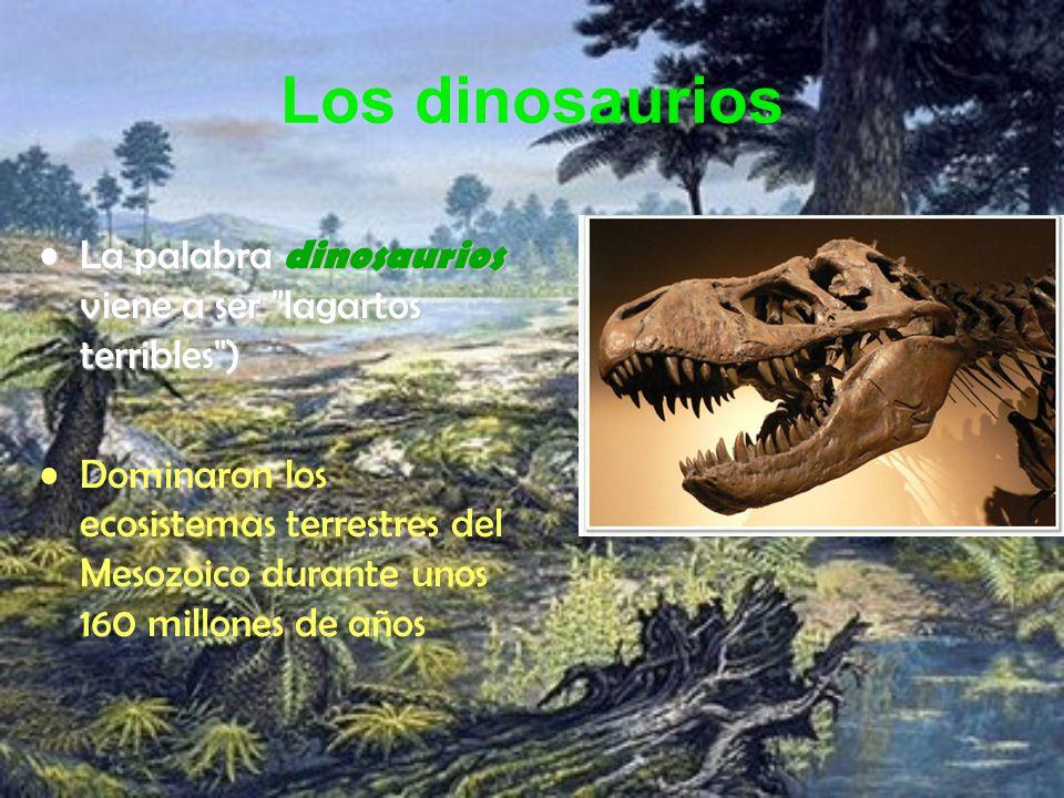 Los dinosaurios La palabra dinosaurios viene a ser lagartos terribles )