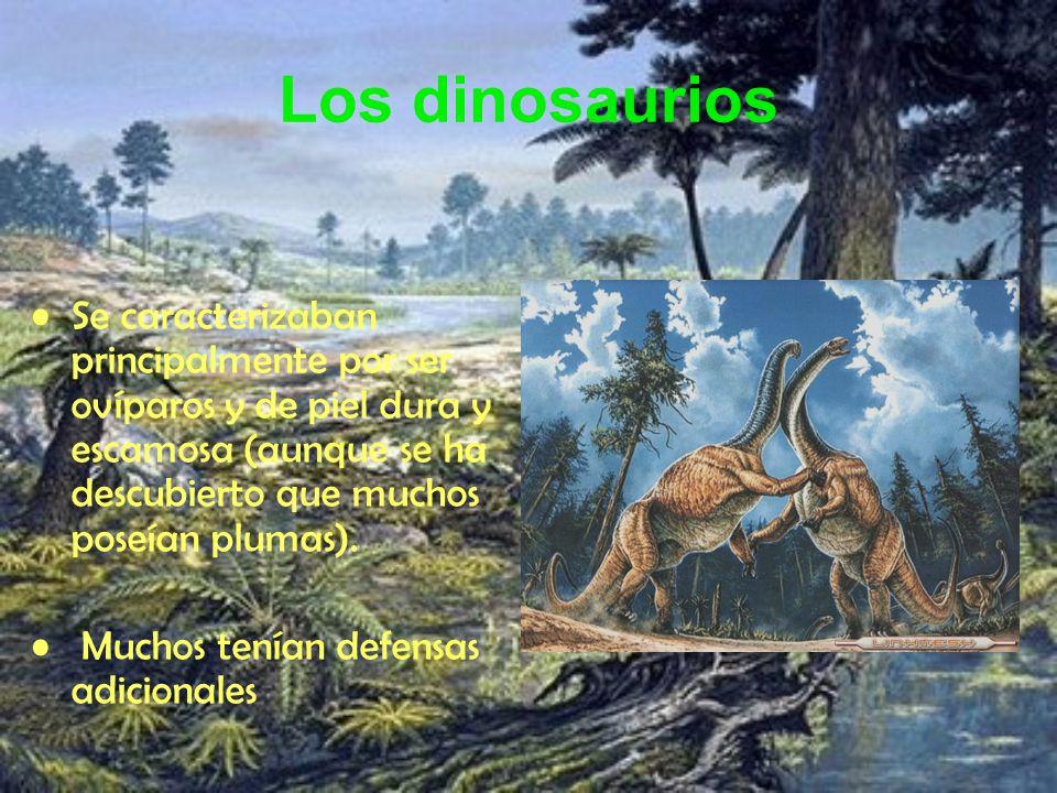 Los dinosaurios Se caracterizaban principalmente por ser ovíparos y de piel dura y escamosa (aunque se ha descubierto que muchos poseían plumas).