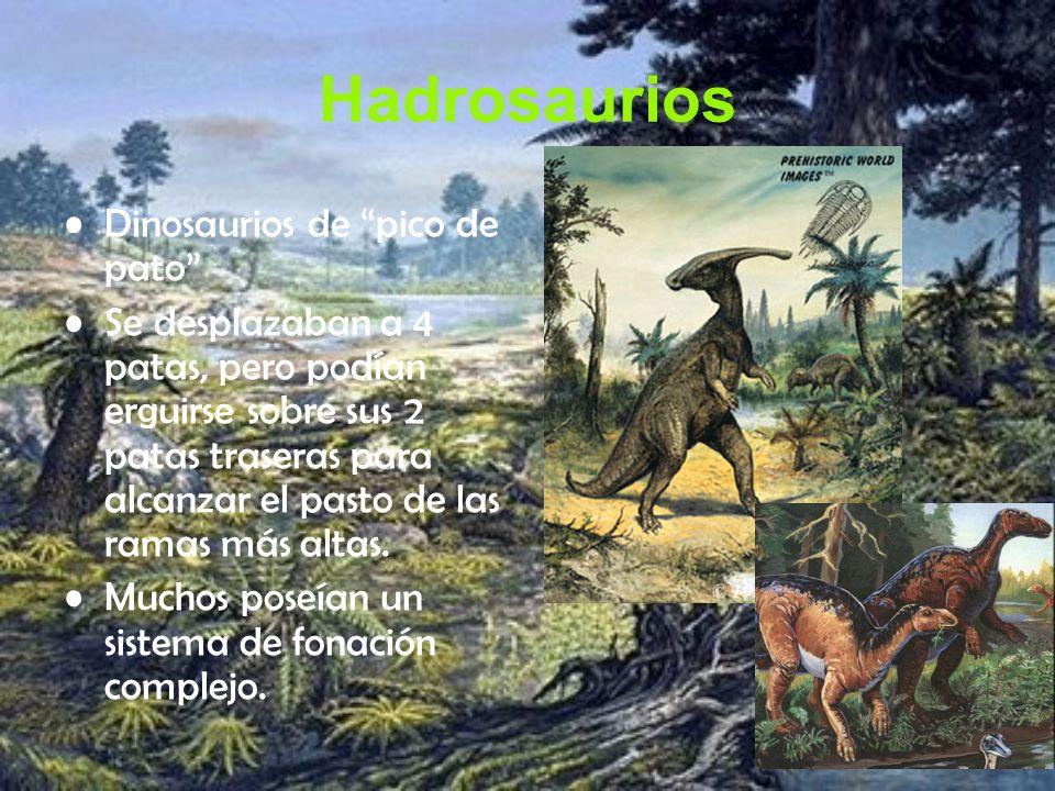 Hadrosaurios Dinosaurios de pico de pato