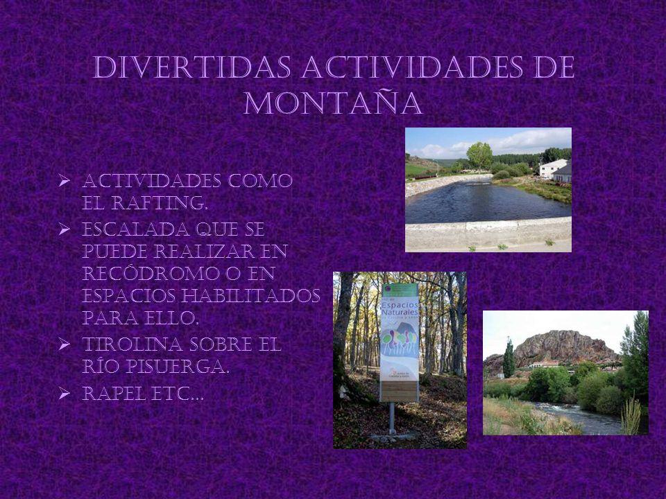 Divertidas actividades de montaña