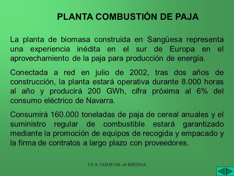 PLANTA COMBUSTIÓN DE PAJA