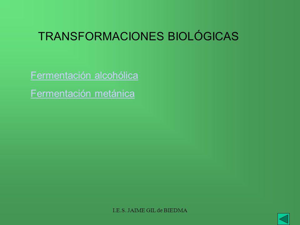 TRANSFORMACIONES BIOLÓGICAS