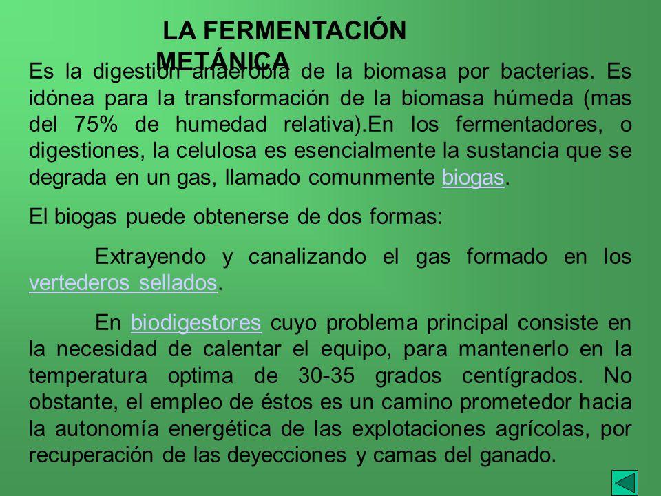 LA FERMENTACIÓN METÁNICA
