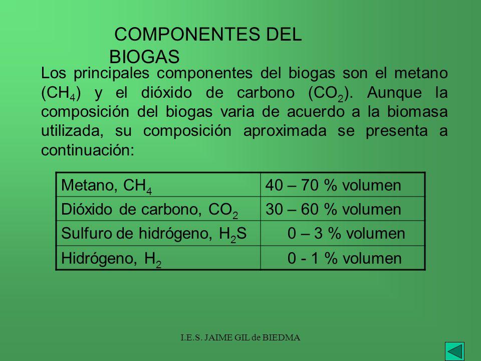 COMPONENTES DEL BIOGAS