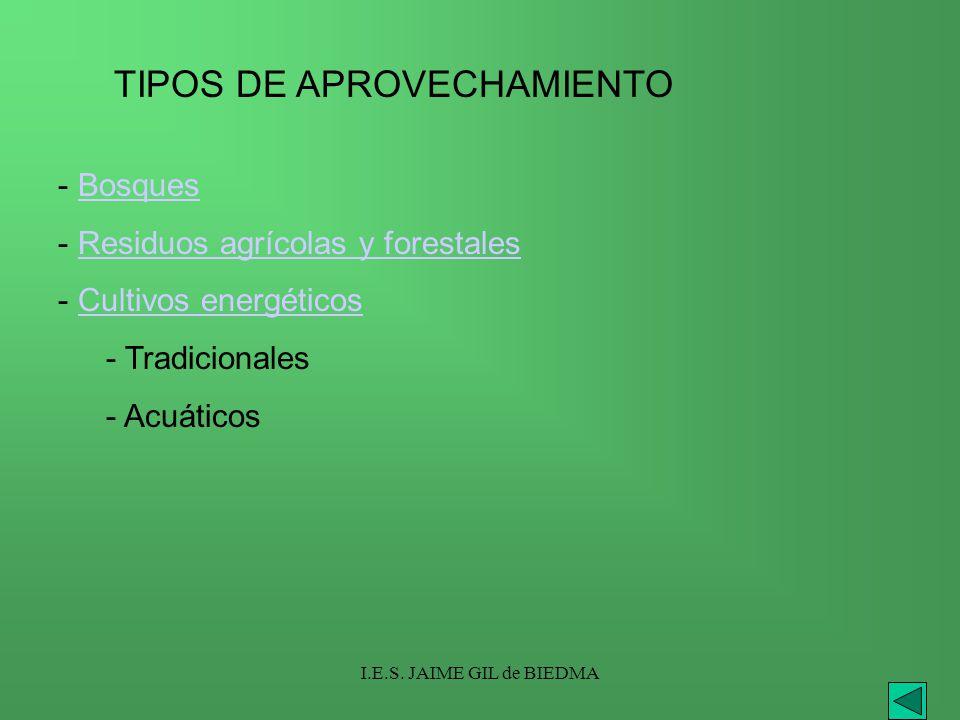 TIPOS DE APROVECHAMIENTO
