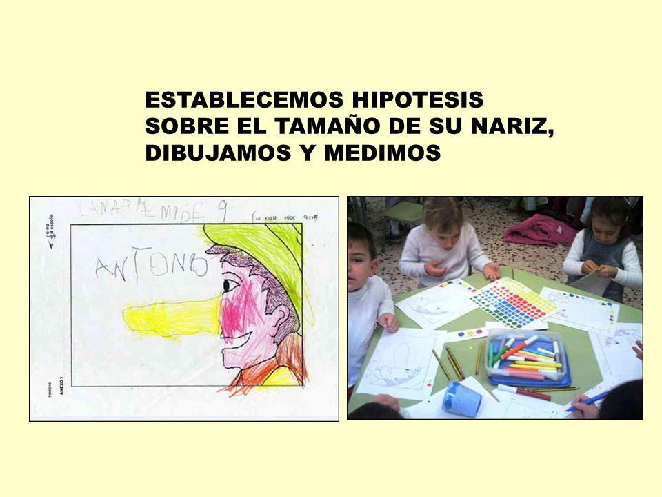 ESTABLECEMOS HIPOTESIS