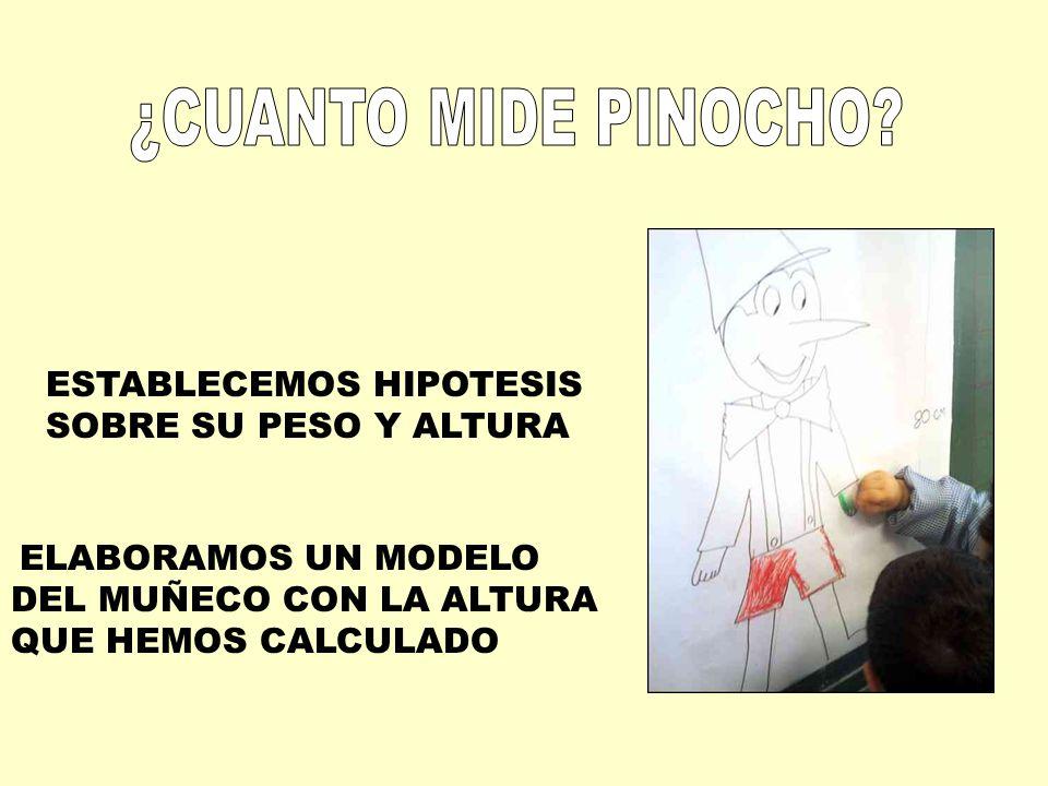 ¿CUANTO MIDE PINOCHO ESTABLECEMOS HIPOTESIS SOBRE SU PESO Y ALTURA