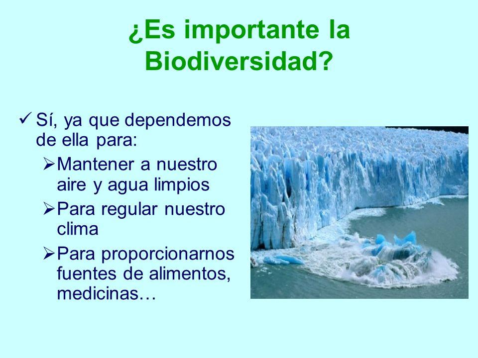 ¿Es importante la Biodiversidad