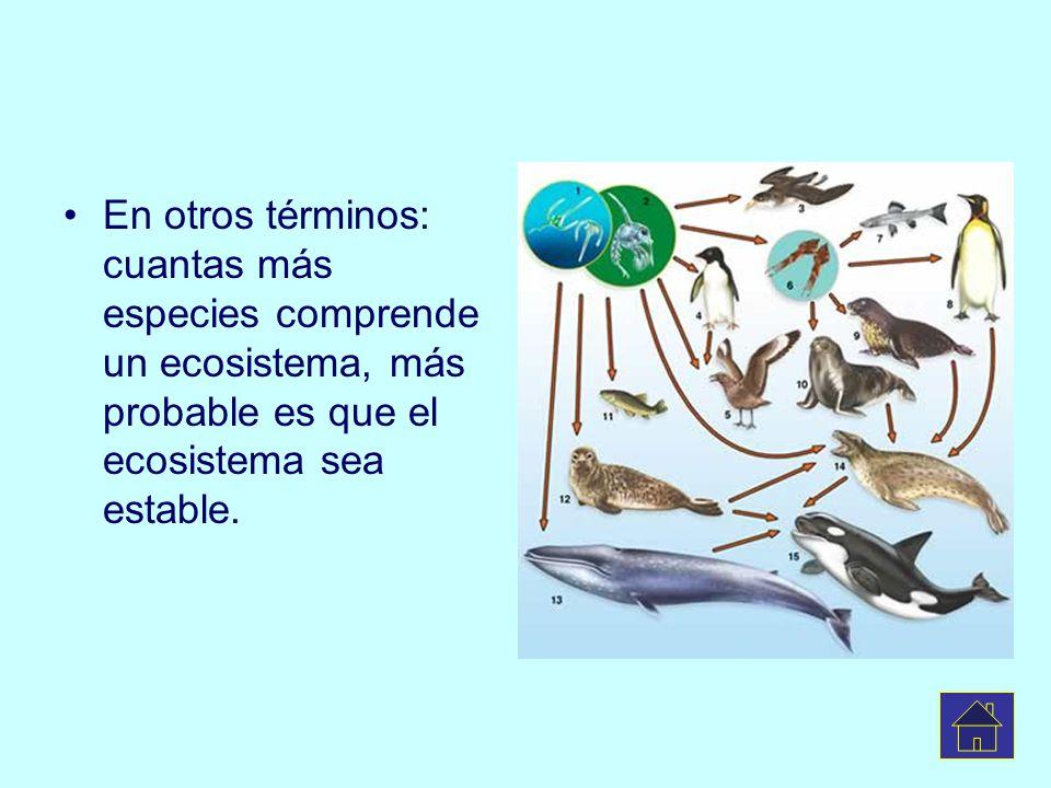 En otros términos: cuantas más especies comprende un ecosistema, más probable es que el ecosistema sea estable.