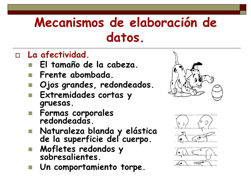 Mecanismos de elaboración de datos.