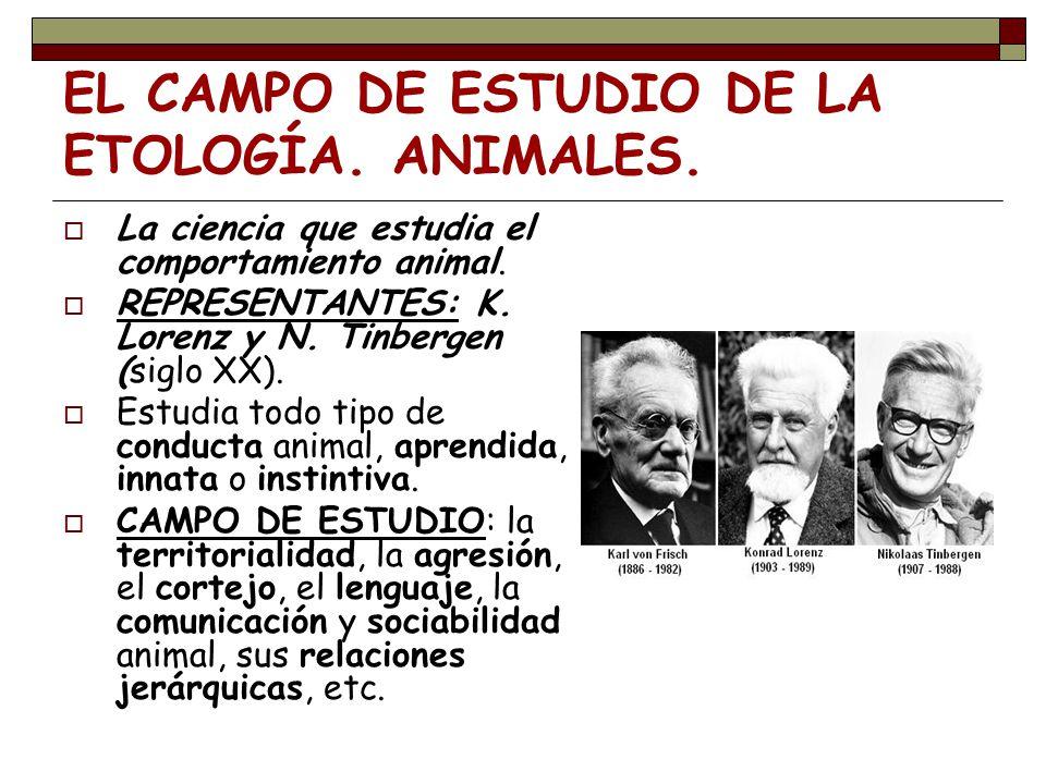 EL CAMPO DE ESTUDIO DE LA ETOLOGÍA. ANIMALES.