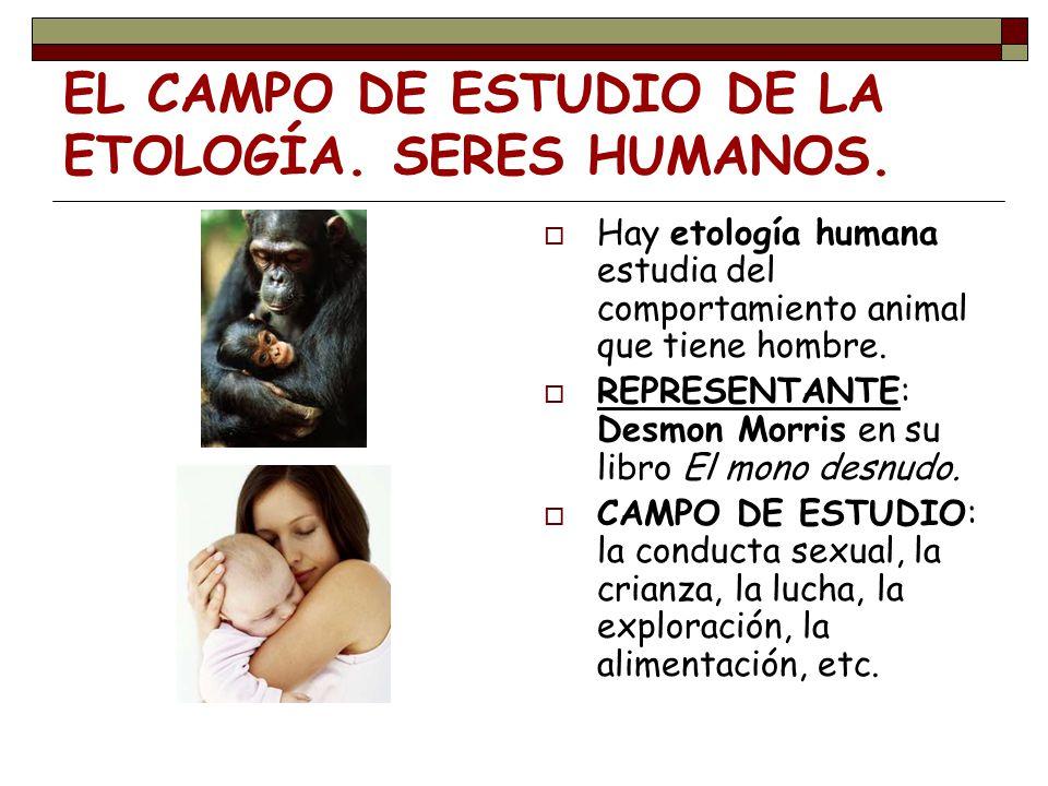 EL CAMPO DE ESTUDIO DE LA ETOLOGÍA. SERES HUMANOS.