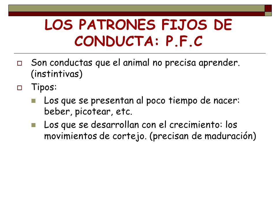 LOS PATRONES FIJOS DE CONDUCTA: P.F.C