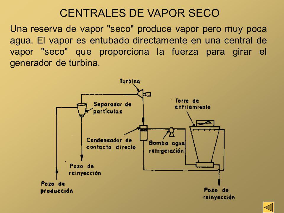 CENTRALES DE VAPOR SECO