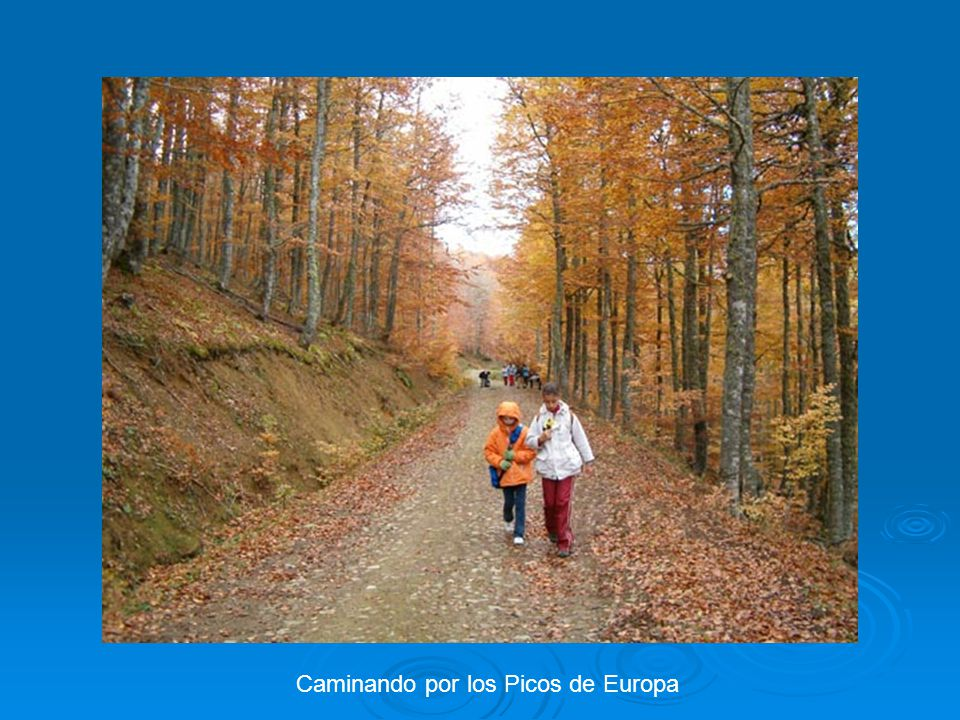 Caminando por los Picos de Europa