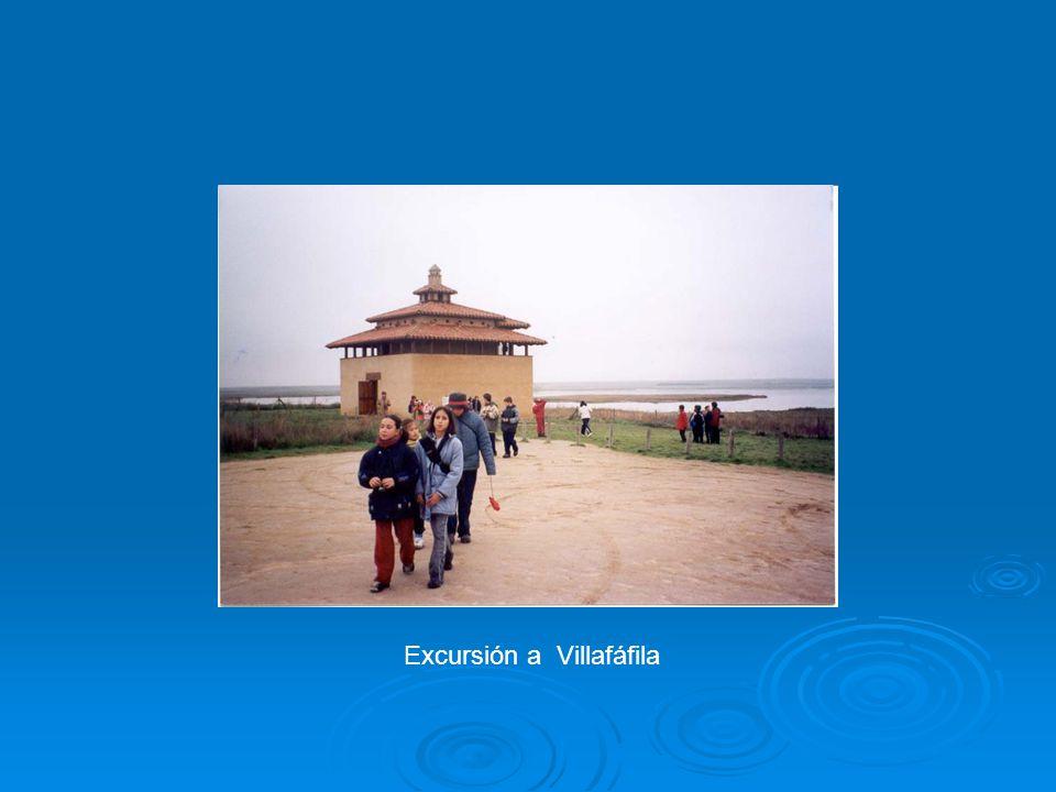 Excursión a Villafáfila