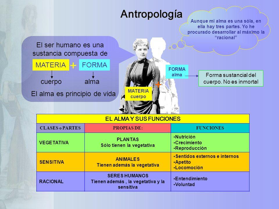 + + Antropología El ser humano es una sustancia compuesta de MATERIA